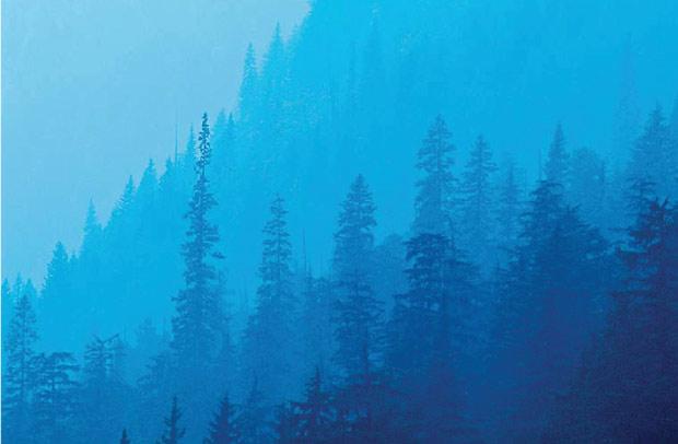 Зимние пейзажи, ловим свет
