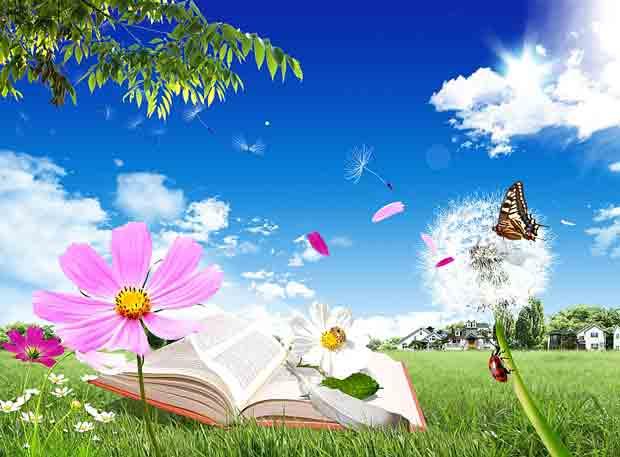 Многослойный летний исходник с книгой
