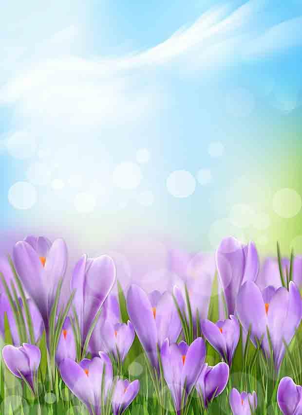 Многослойный исходник весенний с цветами