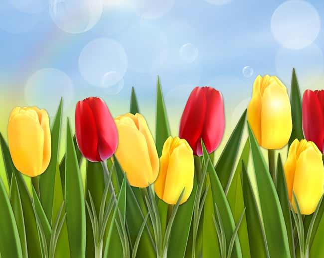 Многослойный исходник тюльпаны
