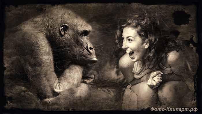 женщина, обезьяна