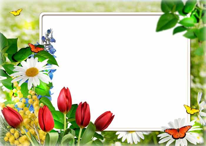 8 марта - рамки для фото