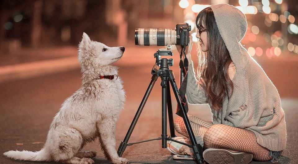 девушка, собака, портрет, фотоаппарат